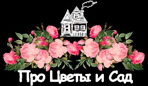 flowergarden.pro